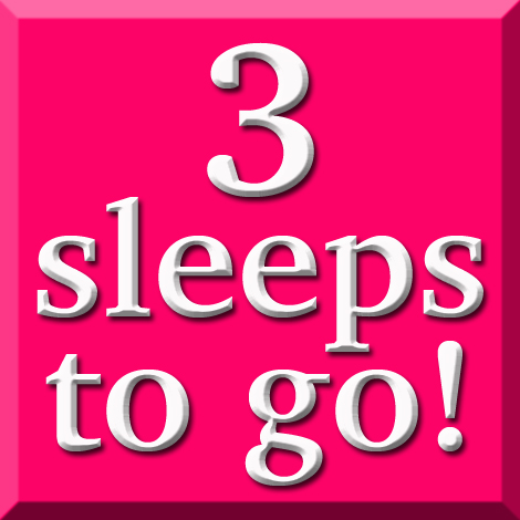 3_sleeps_to_go